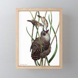 Baby Bird I Framed Mini Art Print