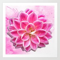 Pretty in Pink Dahlia Art Print