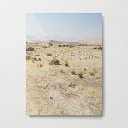 Desert Hike Metal Print