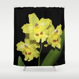 Glorious Golden Orchid - Odontonia Yellow Parade Alpine Shower Curtain