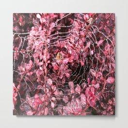 Web Weaver... Metal Print
