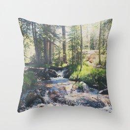 a mountain stream ... Throw Pillow