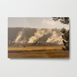 Bison in a Steamy Thermal Area Metal Print