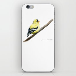"""""""Little Goldie"""" painting by Teresa Thompson iPhone Skin"""