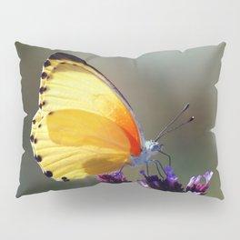 Yellow butterfly Pillow Sham