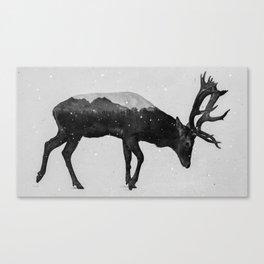 Red Deer (B&W) Canvas Print