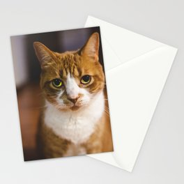 The Cat. Stationery Cards