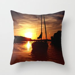 The Flying Wasp Throw Pillow