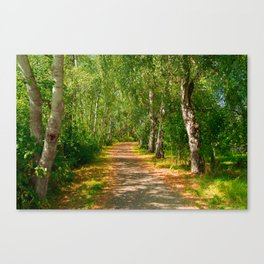 Path to happiness Canvas Print