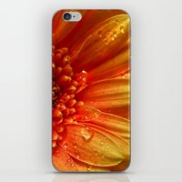 tequila iPhone & iPod Skins featuring Tequila Sunrise by Tracy66