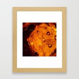 Baltic Amber || Framed Art Print