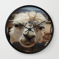 lama Wall Clocks featuring Lama  by Ricarda Balistreri