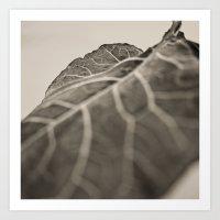 The Collard, Green Art Print