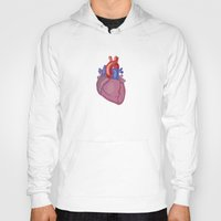 anatomical heart Hoodies featuring Anatomical Heart by Kyle Phillips