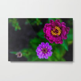 Purple Triplets Metal Print