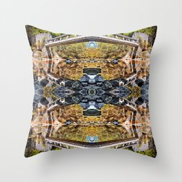 Symmetrical kaleidoscope surreal of old elevated footbridge with reflections in river Throw Pillow