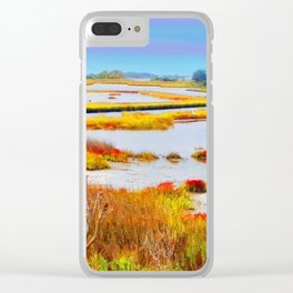 Wetlands Clear iPhone Case