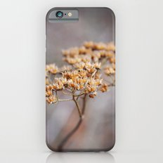 Dried Up iPhone 6s Slim Case