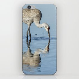 Sandhill Crane and Reflection iPhone Skin