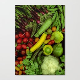 Spring Mix Canvas Print