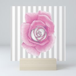Pink Rose on Stripes Mini Art Print