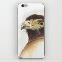 eagle iPhone & iPod Skins featuring eagle by Alessandra Razzi Illustrazioni