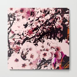 Hana Collection - Sakura II Metal Print