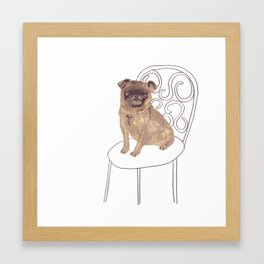 Pug on a chair Framed Art Print