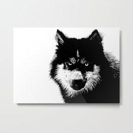 husky - black&white Metal Print