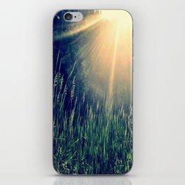 Late July iPhone Skin