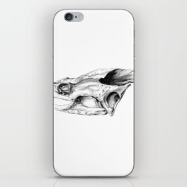 Snapping Turtle Skull iPhone Skin