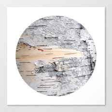 Planetary Bodies - Birch Canvas Print