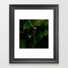 Nature Angel Framed Art Print