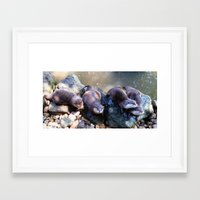 otters Framed Art Prints featuring Otters by Shalisa Photography