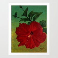 Red hibiscus Art Print