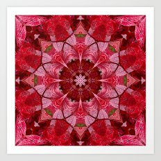 Cranberrybush Viburnum mandala Art Print