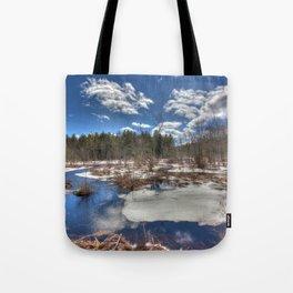Early Spring Marsh Tote Bag