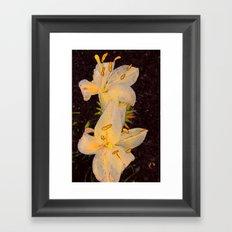 Floral Fireworks Framed Art Print