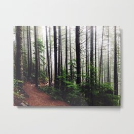 Sound of the Trees Metal Print