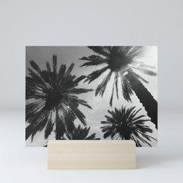 Black and White Miami Palm Trees Mini Art Print