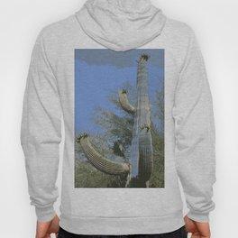 Saguaro Abstract Hoody