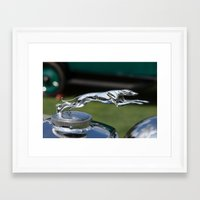 greyhound Framed Art Prints featuring Greyhound by the_continuum