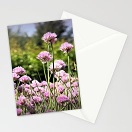 Chives & Bokeh Stationery Cards