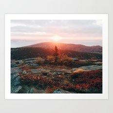 Cadillac Mountain Art Print