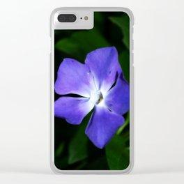 Warburton 4 Clear iPhone Case