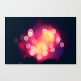 Let The Moment Take You Canvas Print