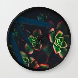 The Succulent Garden 1 Wall Clock