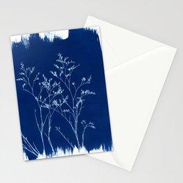 Limonium Cyanotype, Herbal Sunprint, Solar Herbalism Stationery Cards