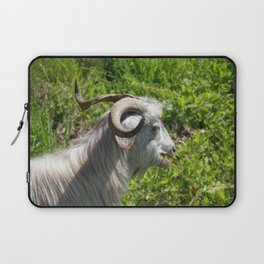 Side View of A Billy Goat Grazing Laptop Sleeve