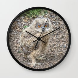Painted Baby Owl Wall Clock